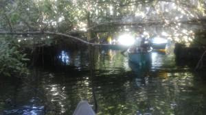 Jowers - Salt Creek
